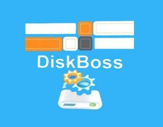 DiskBoss Enterprise 11.1.28 Crack